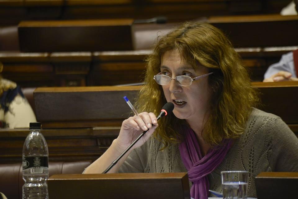 Bottino: No basta con la herramienta de ley de cuotas si no hay voluntad política