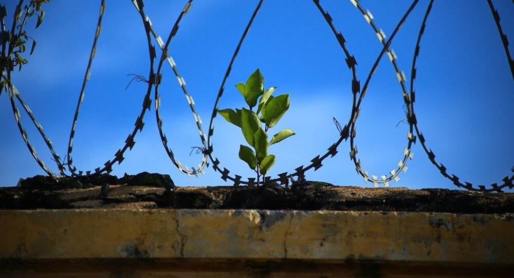 Cárceles en Uruguay: cambios y mejoras clave